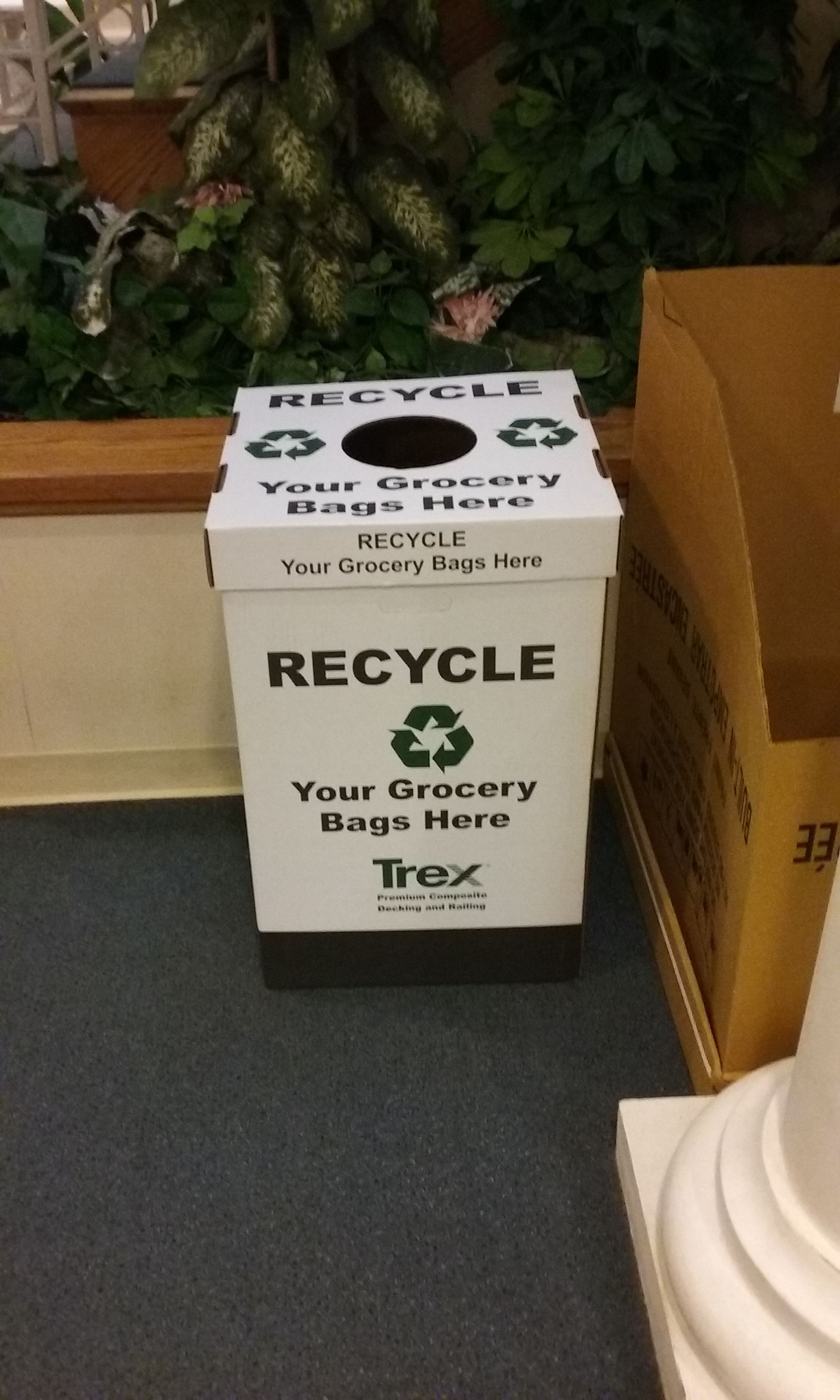 Plastic Bag Recycling Collection Box in Borough Hall